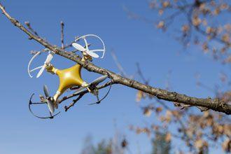 drone amarillo enganchado a la rama de un árbol