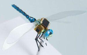 dragonflEye el drone mas pequeño del mundo
