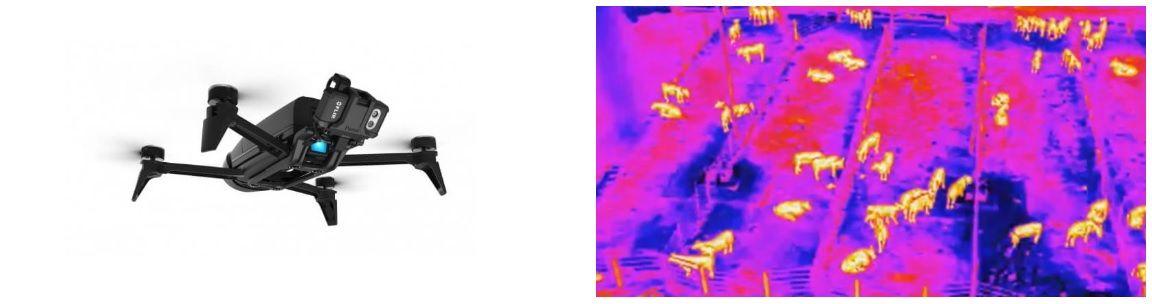Agrodrone mapeador camara visual y termica
