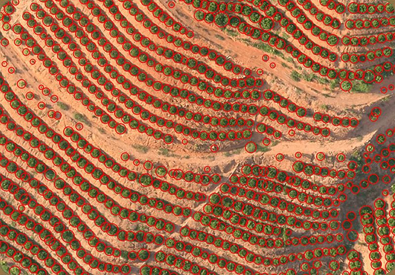 El XAG Xplanet puede reconocer el terreno en 3d e incluso los árboles de manera individual