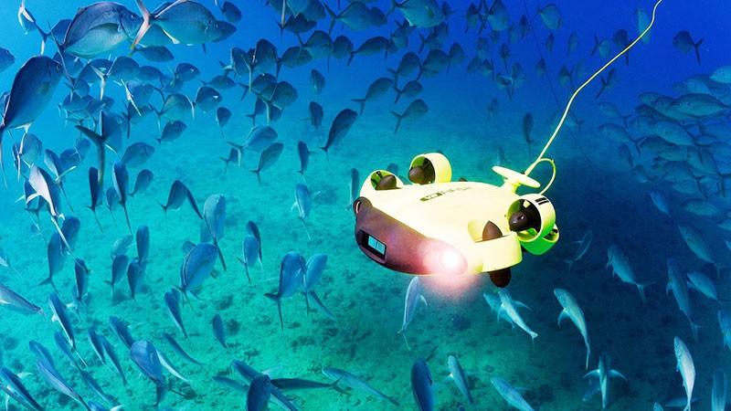 Los pontentes focos de 4000 Lumenes del QYSEA Fifish V6 ROV iluminan bien la escena bajo el agua.
