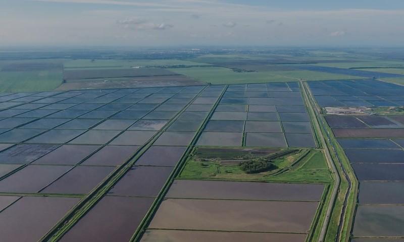 Xag p30 y Jetseed para siembra de arrozales