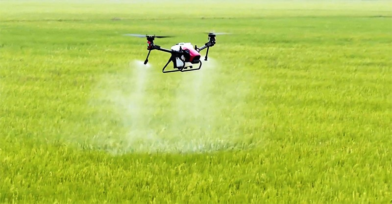 Un dron XAG Polaris V40 fumigando un arrozal.